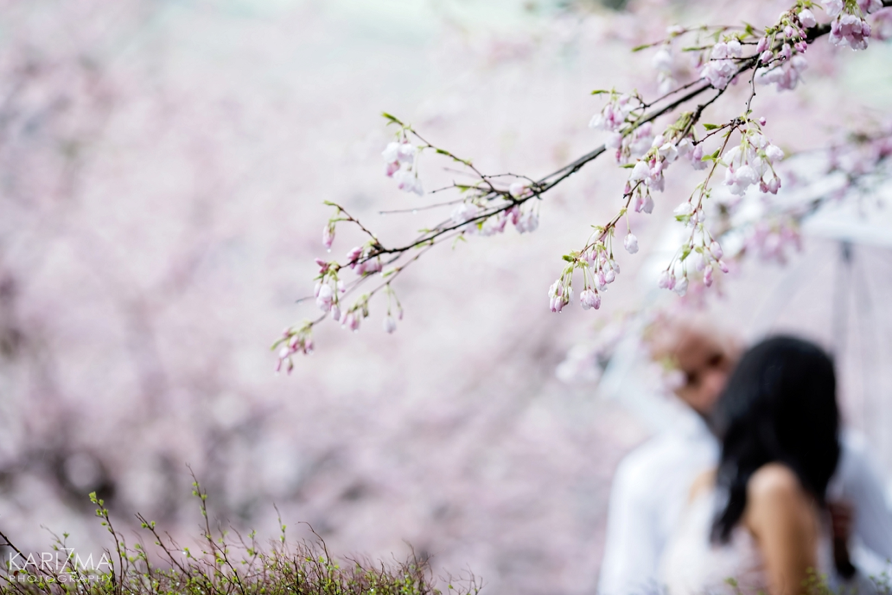 VANCOUVER CHERRY BLOSSOM ENGAGEMENT (16)