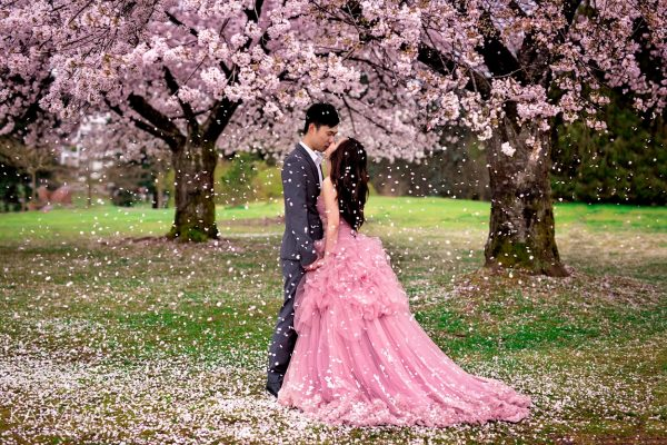 Cherry blossom engagement Vancouver